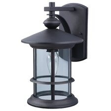 Treehouse 1-Light Outdoor Wall Lantern