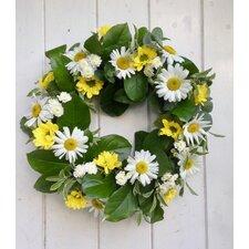 Fresh Daisy 40cm Ornament Wreath