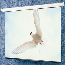 "Matte White: Targa Electric Screen  - HDTV 65"" diagonal"