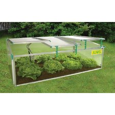 BioStar 2.6 Ft. W x 4.92 Ft. D Cold-Frame Greenhouse