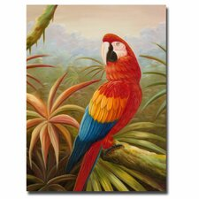 'Amazon Rain Forest' by Rio Graphic Art on Canvas