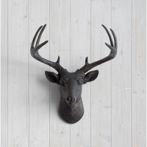 Deer Head Wall Decor wall charmers virginia faux taxidermy mini deer head wall décor