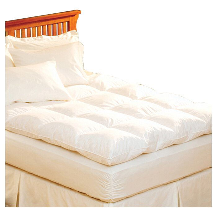 pacific coast feather luxe loft 100 cotton feather bed u0026 reviews wayfair