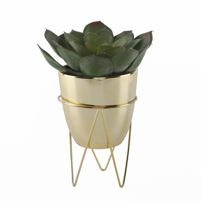 Desktop Succulent in Metal Pot