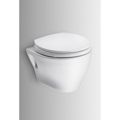 wall hung dual flush elongated toilet bowl universal mounted support tank old parts
