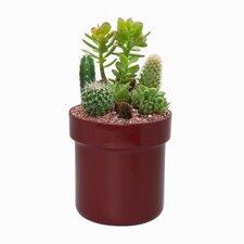 Flower Pot Diversion Safe with Key Lock