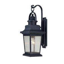 Barrister 1-Light Outdoor Wall Lantern