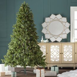 christmas trees with stands - Christmas Tree Shop Careers